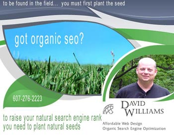 "Got Organic SEO? To raise your placement in the organic (natural) search engine results you need to plant organic (natural) seeds for growth. David Williams offers Organic Search Engine Optimization (SEO) services based on ""White Hat"" search engine optimization best practices."
