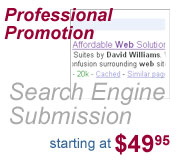 Search Engine Promotion and Marketing by David Williams